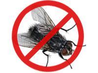 Balaji Pest Control coupons