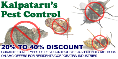 Kalpatarus Pest Control offers India