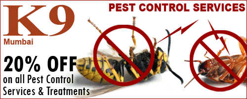 K9 Pest Control Services offers India