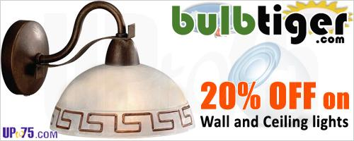 Bulbtiger offers India